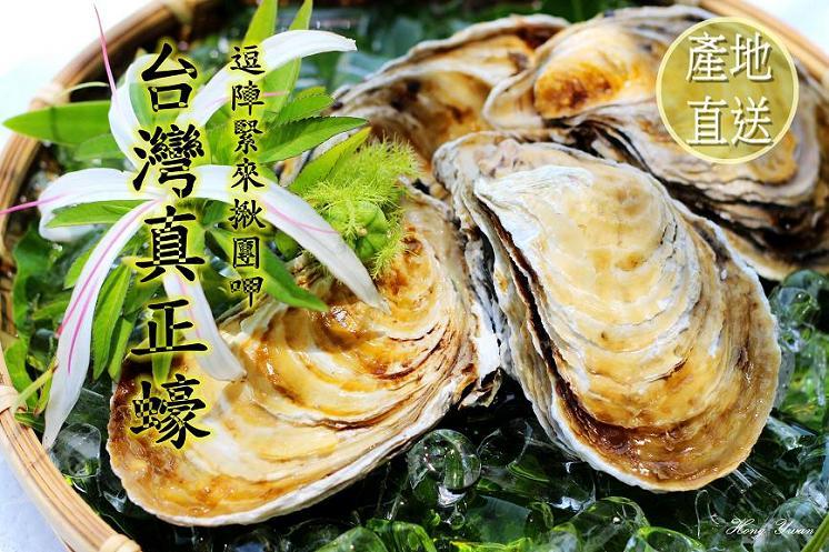 新鮮帶殼牡蠣
